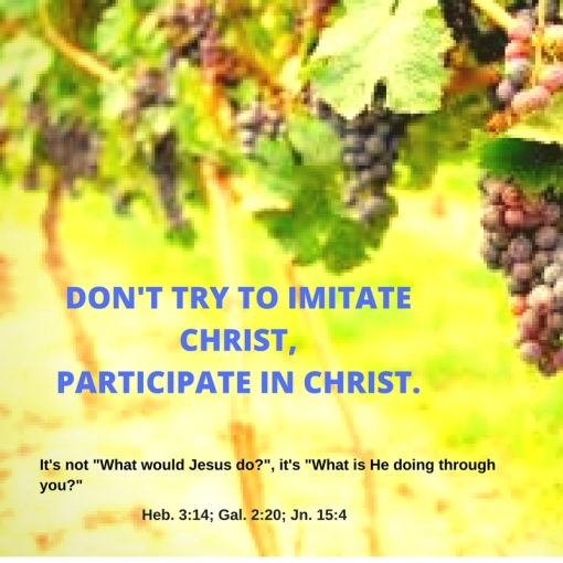 Don't try to imitate Christ, participate in Christ